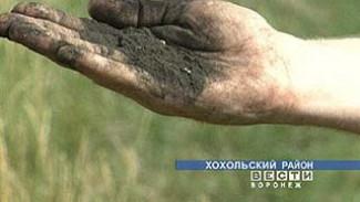 В Хохольском районе химические ожоги почвы стали объектом пристального внимания со стороны ученых