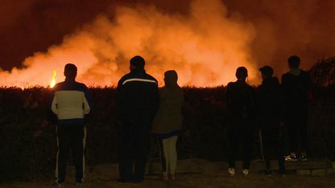 Пожары-2020 в Воронеже