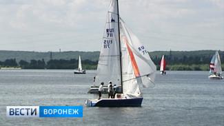 В Воронеже пройдёт финал всероссийской парусной регаты «Кубок Черноземья»