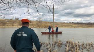 Воронежские энергетики пообещали надёжное электроснабжение во время паводка