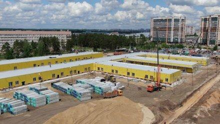 Шойгу рассказал о строительстве инфекционной больницы в Воронеже