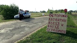 Посёлок особого режима. Как живёт закрытая на карантин по COVID-19 воронежская Дубровка