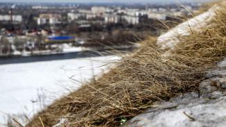 Спасатели предупредили жителей Воронежской области о непогоде