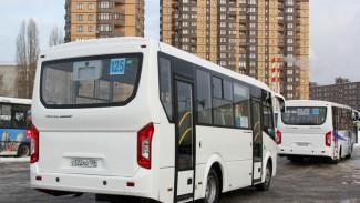 Автобусы №125 вернулись на прежний маршрут вопреки решению мэрии Воронежа
