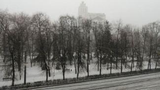 Мощный снегопад обрушился на Воронеж