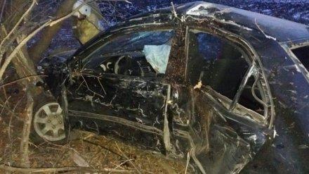 В Воронежской области водитель иномарки разбился при обгоне