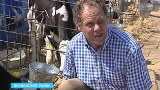 Отечественные молочники проигрывают рынок местным производителям фальсификата