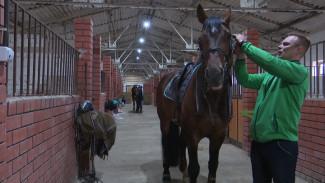 «Убило лошадей, пришлось уехать». Под Воронежем чемпион Украины готовится к олимпиаде и мечтает о гражданстве