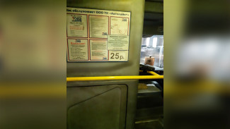Воронежец сообщил о подорожании проезда в маршрутке до 25 рублей