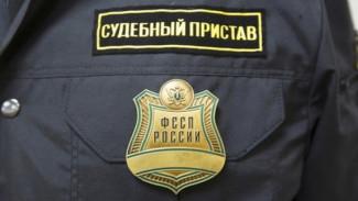 В Воронежской области мать должника осудили за избиение судебного пристава