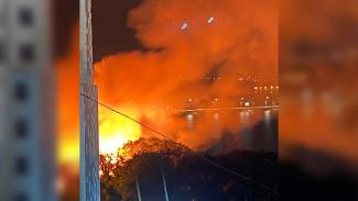 Крупный пожар на берегу водохранилища в Воронеже уничтожил лодочную станцию
