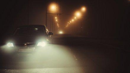 Синоптики: Воронежскую область вновь окутает опасный туман