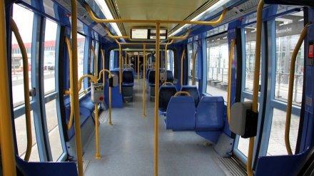 Стало известно, какие автобусы закупит Воронеж по программе Минтранса