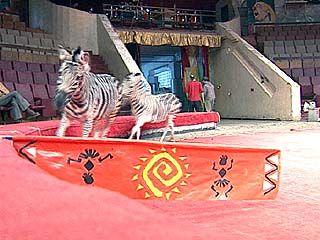11 марта в цирке - премьера