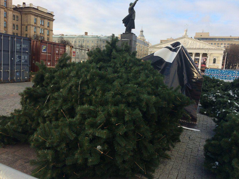 В Воронеже начали устанавливать ёлку, которая по цене обогнала даже Кремлёвскую