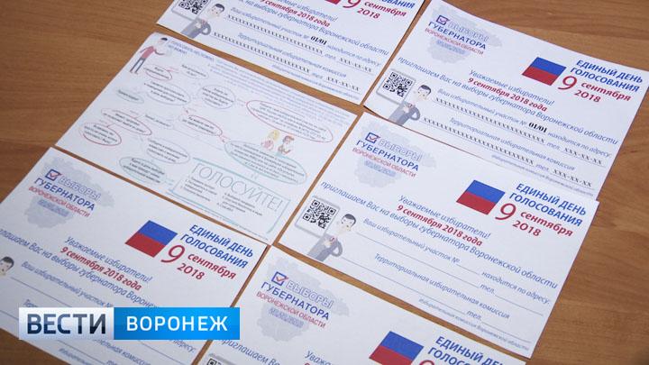 В Воронежской области члены избирательных комиссий начали поквартирный обход