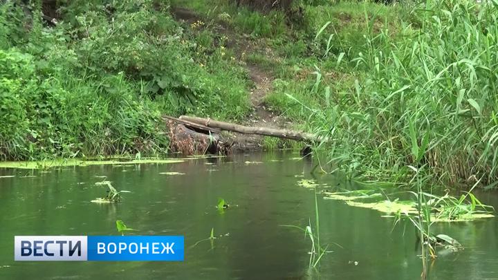 Жители Калача остались недовольны расчисткой реки Подгорной
