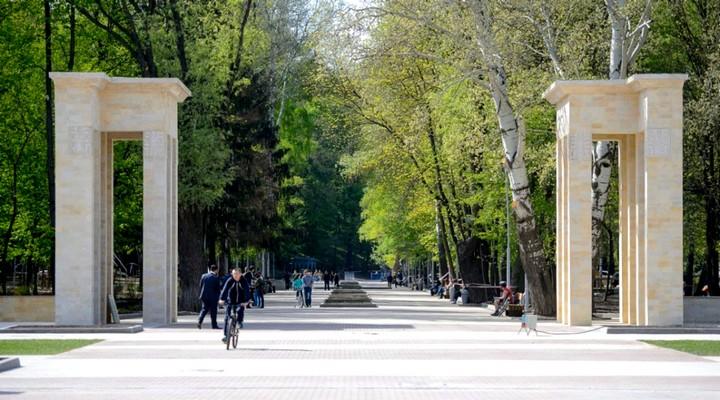 Концепцию развития Центрального парка Воронежа разработают 3 европейских компании