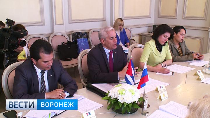 Кубинцев интересует опыт Воронежской области в сфере авиастроения