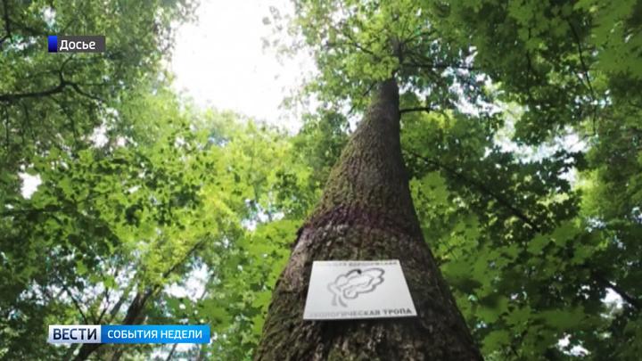 Непройденный путь. Можно ли спасти Большую экологическую тропу в Воронеже