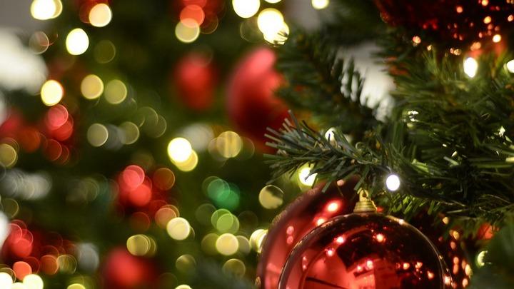Минтруд предложил воронежцам длинные новогодние и майские праздники в 2019 году