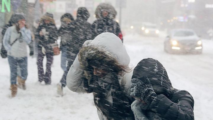 На рабочей неделе в Воронежскую область вновь вернутся снег и морозы