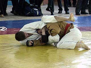 60 спортсменов выясняли кто сильнее в джиу-джитсу