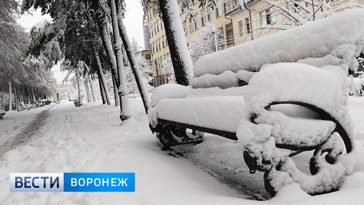 Синоптики рассказали, где больше всего снега выпало в Воронежской области