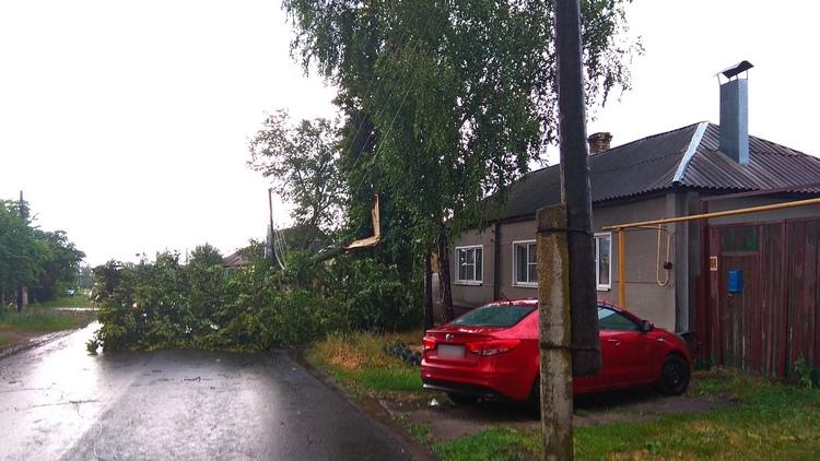 Сорванные крыши и жертвы рухнувших деревьев. В райцентре Воронежской области прошёл ураган