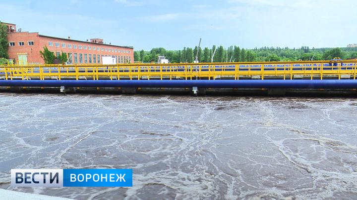 Воронежцам пообещали, что вонь от очистных сооружений исчезнет к концу года