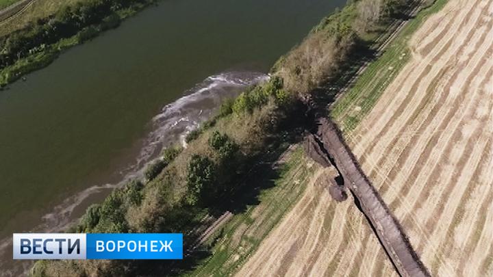 Сохранение озера Круглое в Воронеже обсудят на общественных слушаниях