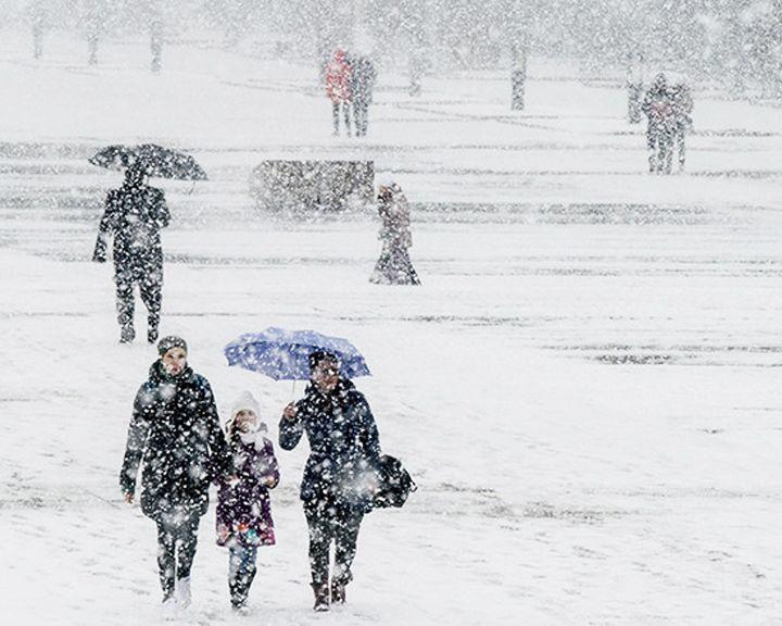 Жителей Воронежской области всю неделю ожидают снегопады
