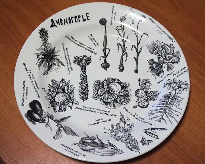 Известный художник сделал для галереи в Дивногорье уникальную посуду