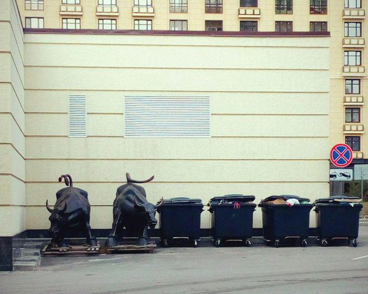 Скульптуры быков, которые планировали установить на улице Карла Маркса, отправились на мусорку