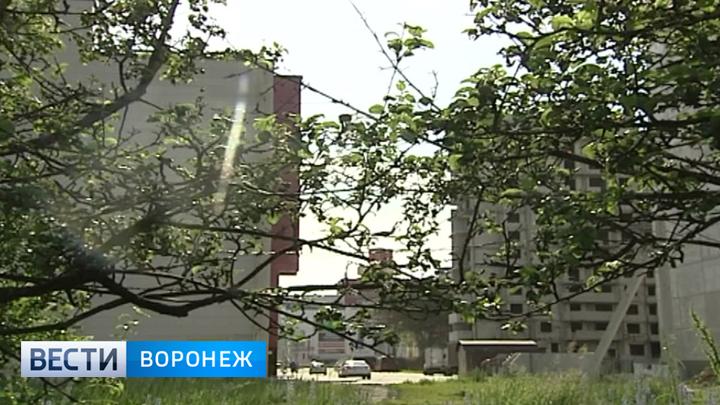 Дело о хищении 70 гектаров воронежского яблоневого сада рассмотрят в суде