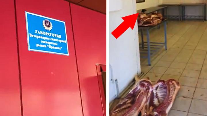 Воронежцев возмутили условия, в которых на городском рынке проверяют качество мяса