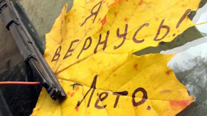 Синоптики: Воронежцев ожидают «хмурые» выходные