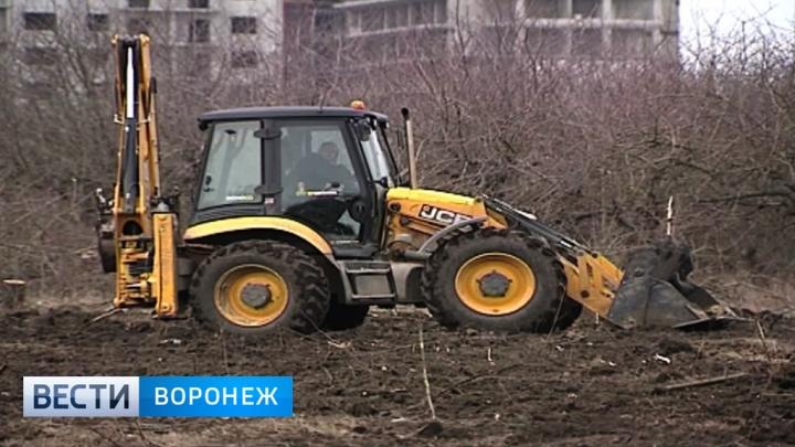 В Воронеже пройдут пикеты в защиту отданного под застройку яблоневого сада