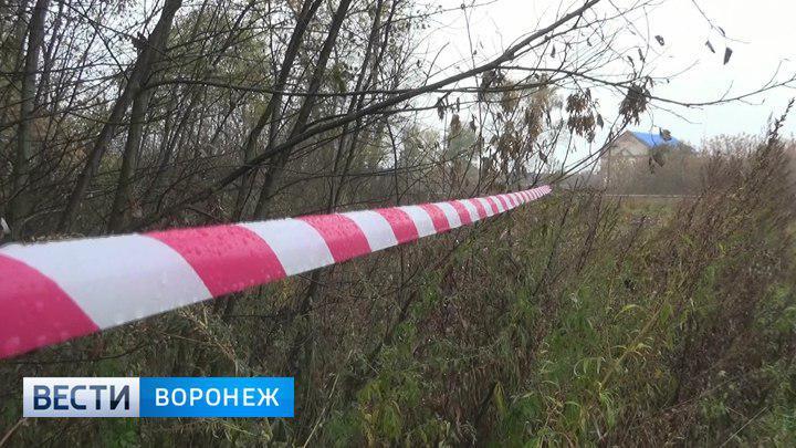 Источник: В убийстве школьницы в Воронежской области заподозрили её 15-летних подруг