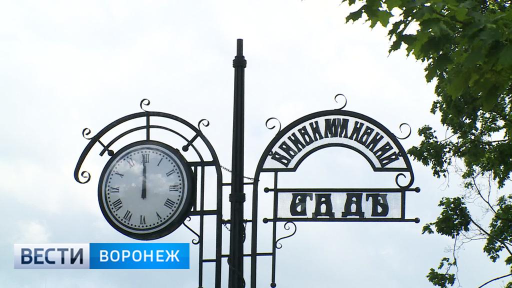 В Бринкманском саду Воронежа время остановилось вместе с реконструкцией