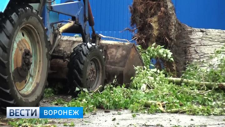 В райцентре Воронежской области до сих пор устраняют последствия урагана