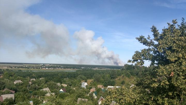 В Воронежском заповеднике загорелся лес: дым виден за несколько километров