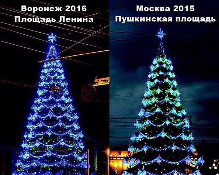 Воронежцы заподозрили, что воронежская ёлка за 7 миллионов может оказаться б/у