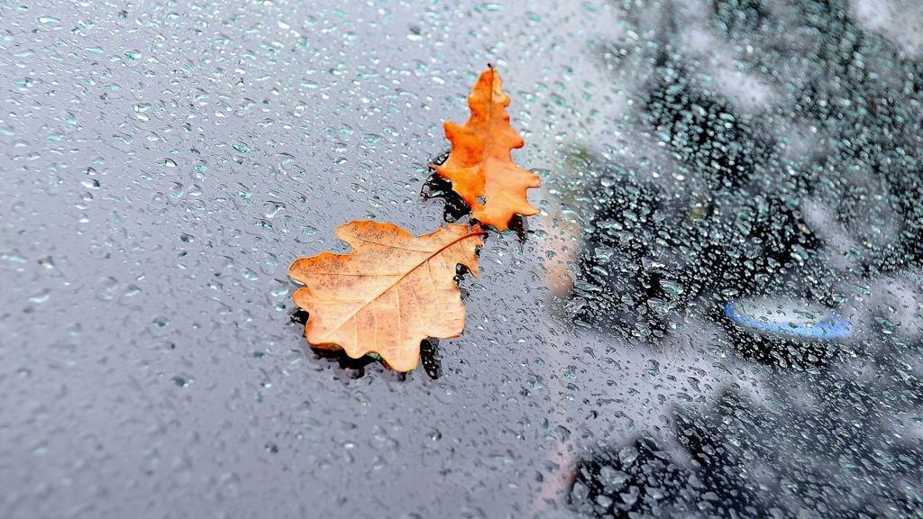 Прогноз погоды на 20.11.17