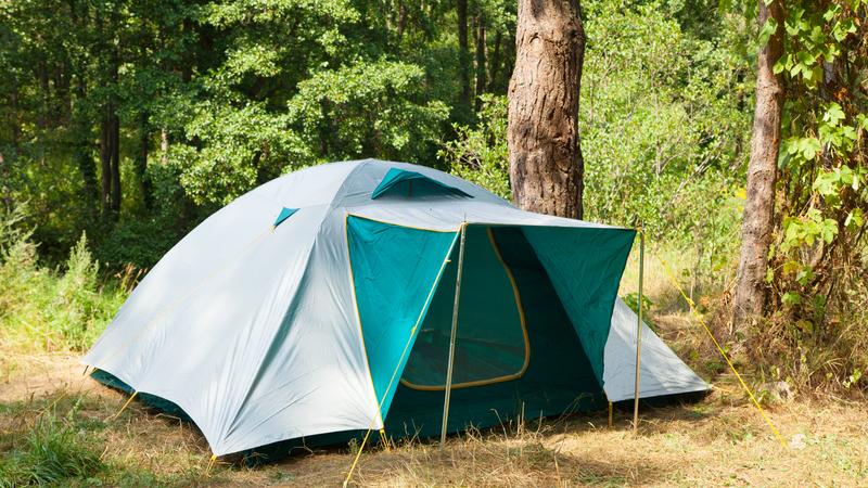 Пропавшие из воронежской школы-интерната подростки жили в палатке