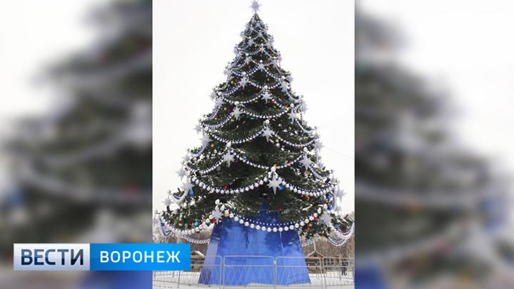 В Воронеже впервые отказались от уникального наряда для главной новогодней ёлки