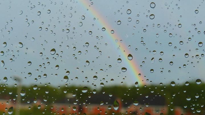 Синоптики обещают воронежцам дождливую неделю и похолодание к выходным