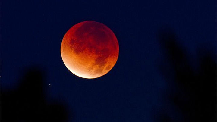 Жители Воронежской области увидят полное лунное затмение и великое противостояние Марса