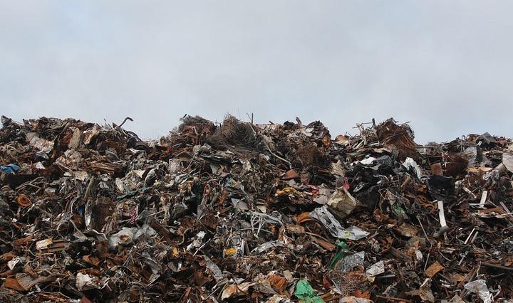 В Воронежской области появятся три новых мусоросортировочных комплекса