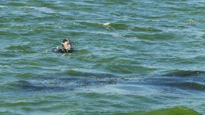 В Воронеже спасли женщину, пытавшуюся переплыть водохранилище